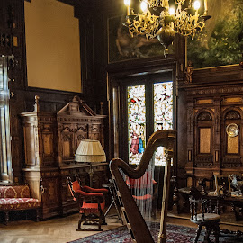 Beautiful harp in queen's house by Amy Gherdan - Artistic Objects Musical Instruments ( harp, musical instrument, vintage, beautiful, artistic )