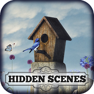 Hidden Scenes - Summer Secrets