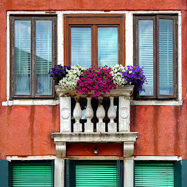 Venice Windows  by Zdenka Rosecka - Buildings & Architecture Other Exteriors