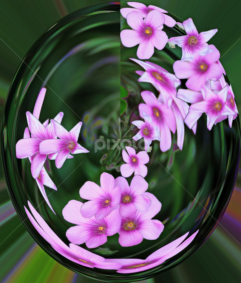 by Dorothy Plumb - Abstract Fine Art ( abstract, purple, joy, green, swirl, white, pleasure, sphere, happiness, friendly, wreath, circle, lavender, spring, clover, abstract image, happy, crystal ball, innocence, pink, springtime, twirl, cheerful, black )