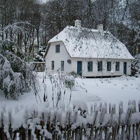 Little Cottage by Beth Alexander - Landscapes Weather