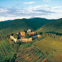 4 Week Wine Course: Discover Italy