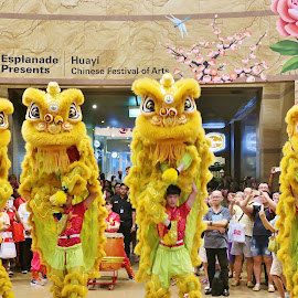 Lion Dance by Koh Chip Whye - City,  Street & Park  Street Scenes (  )