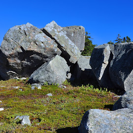 Armor Stones by Harold Bradley - Landscapes Caves & Formations ( huge, glacier, boulders, massive, seascape, historical, glacial, landscape, stones )
