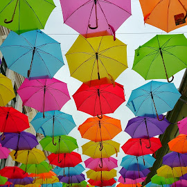 coloured umbrellas by Lux Aeterna - Instagram & Mobile Android