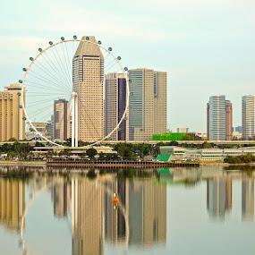 Singapore Flyer by Kelvin Đào - City,  Street & Park  City Parks ( water, flyer, building, morning, city )