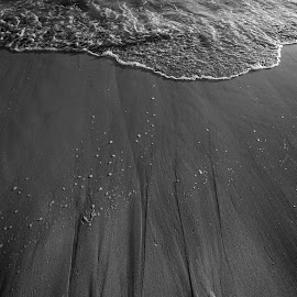 Living Sand by Brianne Toma - Nature Up Close Sand ( abstract, water, sand, monochrome, nature, black and white, texture, tropical, honolulu, wave, beach, hawaii )