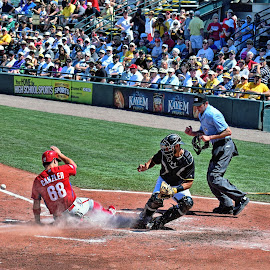 The Winning Run by Lanis Rossi - Sports & Fitness Baseball ( slide into home plate, baseball, play at the plate, winning run, run scores, scoring play, baseball game, play at home plate )