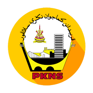Download PKNS for PC