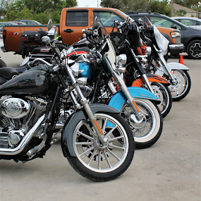 Bikes by Patti Westberry - Transportation Motorcycles ( motorcycles, bikes, colors, chrome, wheels )
