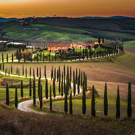 Tuscany rural sunset landscape. Italy. by Enzo Minchella - Landscapes Mountains & Hills ( hills, green field, tuscany, cypresses trees, sun light, italy, countryside farm )