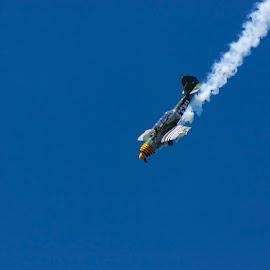 Down, Down, Down, with Smoke by Craig Warton - Transportation Airplanes ( redcliffe kite festival, craig warton, plane, aeroplane, aerobatics, redcliffe kite fest, yak 52, smoke, airshow )