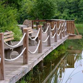 Serenity by Bridget Wegrzyn - City,  Street & Park  City Parks