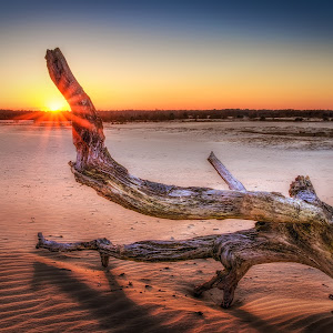 log with sunset-JP-2.jpg