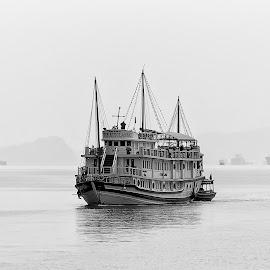 Ha Long Bay by Hale Yeşiloğlu - Transportation Boats ( ha long, halong, vietnam, black and white, travel, landscape )