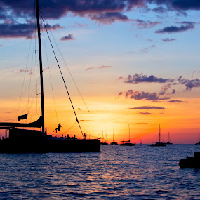 Catamaran Silhouette by Mia Iversen - Landscapes Waterscapes