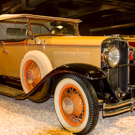 0722-TA-0621-02-16 by Fred Herring - Transportation Automobiles