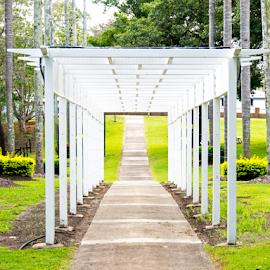Lead on by Jo Soule - City,  Street & Park  City Parks ( park, parks, path, follow )