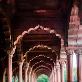 Dewan- a- aam by Gunbir Singh - Buildings & Architecture Public & Historical ( red stone, structure, new delhi, arches, historical, gunbir, dewan a aam, red fort )