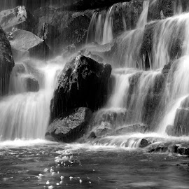 Waterfall by Gil Reis - Black & White Landscapes ( water, hills, life, bio, nature, travel, places, portugal )