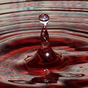 drops Jan 8 2012f101.jpg