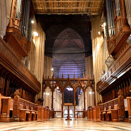 Great Choir by Austin Speaker - Buildings & Architecture Places of Worship ( chancel, gothic, arch, wood, rood screen, stone, national cathedral, quire, choir stalls, great choir )