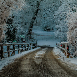 by Mario Horvat - Transportation Roads ( winter, wooden, cold, snow, trees, bridge, road )