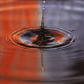 by Onur Köksal - Nature Up Close Water