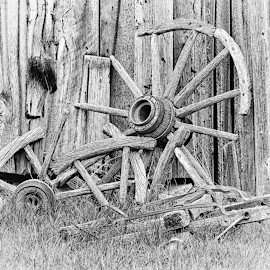 Long Forgotten by Twin Wranglers Baker - Black & White Objects & Still Life