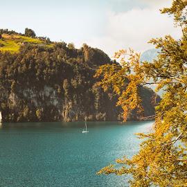 The Magic Autumn Mood at Lake Lucerne by Franz Engels - Landscapes Travel ( lake lucerne, colorful, beautiful, lake, travel, landscape, landschaftsfotografie, herbst, brunnen, autumn, switzerland, landscape photography, vierwaldstättersee )