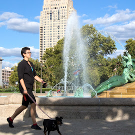 Walking the Dog by Judy Florio - City,  Street & Park  Fountains ( clouds, urban, leash, walking, sky, swann memorial fountain, woman, fountain, sunny day, dog, city )
