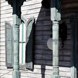 Skeleton Shadow  by Lorraine D.  Heaney - Buildings & Architecture Architectural Detail