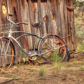 by Jon Morgan - Transportation Bicycles