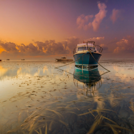 Ready by Choky Ochtavian Watulingas - Landscapes Sunsets & Sunrises ( clouds, seaweeds, boats, reflections, seascape, sunrise, skies )