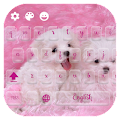 App Kawaii Whelp Typewriter APK for Kindle