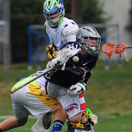 Take out check by Kevin Mummau - Sports & Fitness Lacrosse ( flying, ball, check, attack, lacrosse )