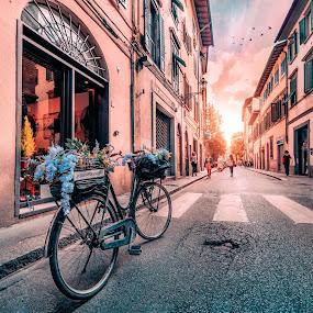 Florence corner by Goran Dzh - City,  Street & Park  Neighborhoods ( nikon, sunlight, italia, bicycle, town, street, sunset, renaissance, tamron, colorful, italy, bike )