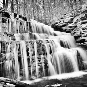 Flowing Falls by Travis Houston - Black & White Landscapes (  )