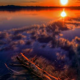Just Floating by Derrill Grabenstein - Landscapes Sunsets & Sunrises