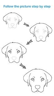 Draw Animal