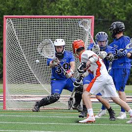 Goal! by Gary Duncan - Sports & Fitness Lacrosse ( high school, varsity, sports, goal, lacrosse )