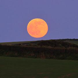 Lunar Rise by Shan  B - Landscapes Prairies, Meadows & Fields ( moon, devon, lunar, landscape, fields )