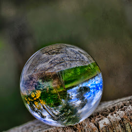 Tilted World by Carole Pallier Cazzazsnapz - Artistic Objects Glass ( fence, reflection, ball, post, tree, glass, sphere, crystal, flowers )