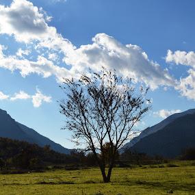 Zagoria valley by Olsi Belishta - Novices Only Landscapes ( gjirokaster, zagoria, albania )