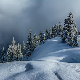 by Trisha Payne - Landscapes Weather ( oregon, crater lake, snow, frozen, pacific northwest, seven wonders of the world,  )
