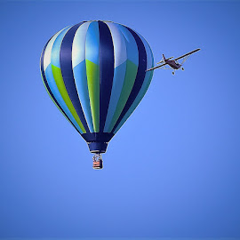 Sky fun by Sue Delia - Transportation Other ( sky, plane, blue, fly, balloon,  )