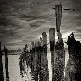 Eroded  by Chris Mare - Landscapes Waterscapes ( clouds, hdr, black and white, bay, bw, cloudy, new york, pilings, landscape )