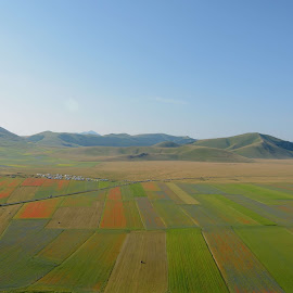 Castelluccio 18 by Bruno Brunetti - Landscapes Prairies, Meadows & Fields ( nature, colors, flowers, italy, castelluccio,  )