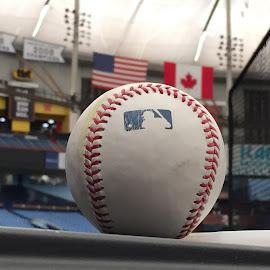 American League by Frank Vila - Sports & Fitness Baseball ( baseball rays toronto american league iphone )