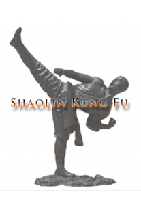 Shaolin Kung Fu Training - screenshot